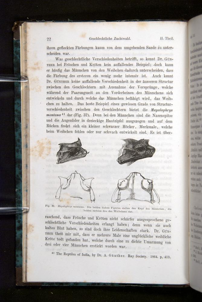 Image of Darwin-F1065.2-1871-022