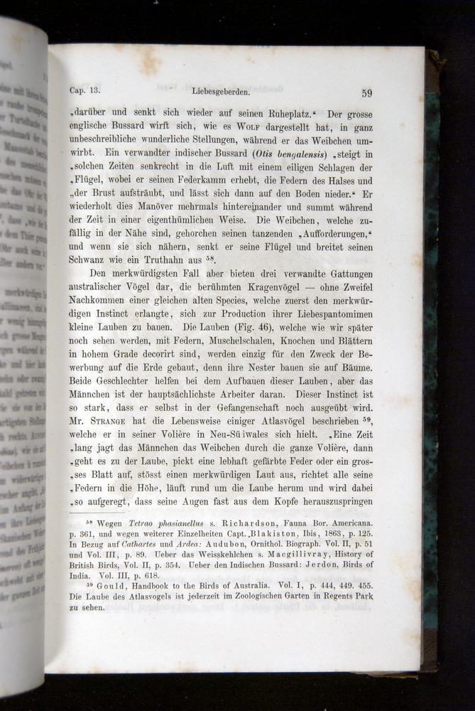 Image of Darwin-F1065.2-1871-059