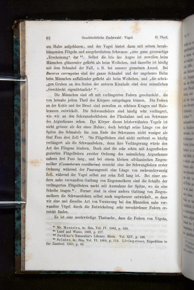Image of Darwin-F1065.2-1871-062