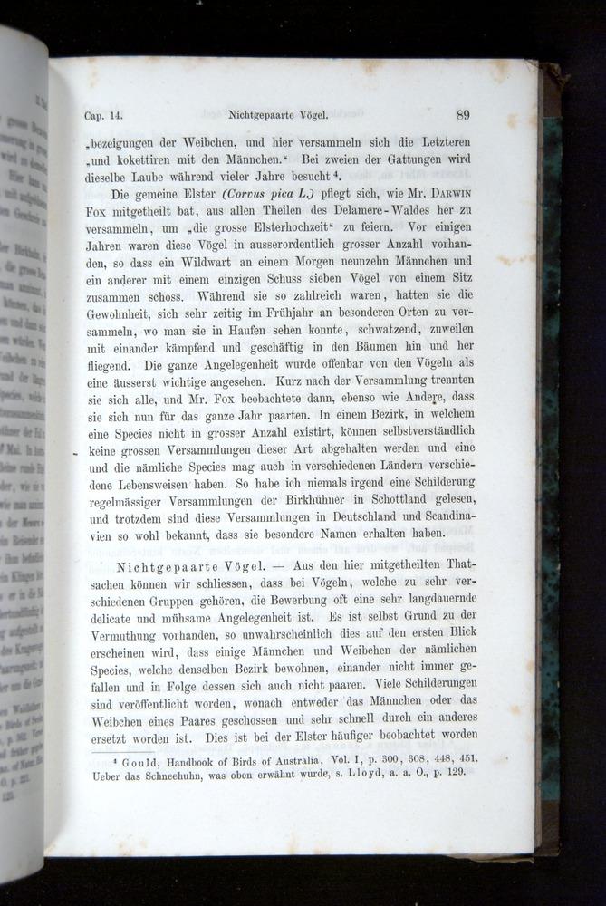 Image of Darwin-F1065.2-1871-089