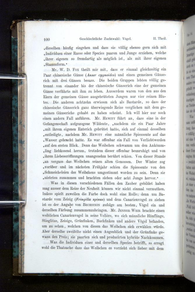 Image of Darwin-F1065.2-1871-100