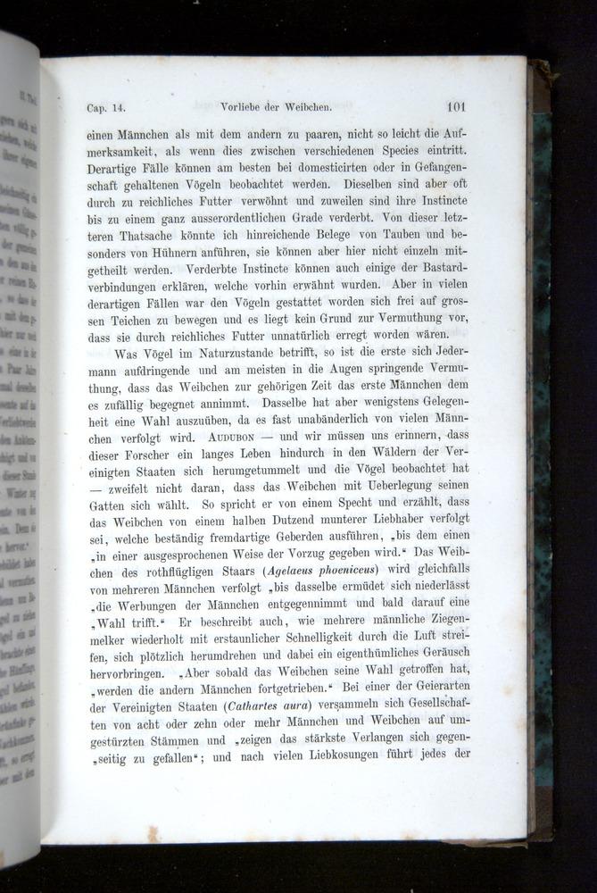 Image of Darwin-F1065.2-1871-101