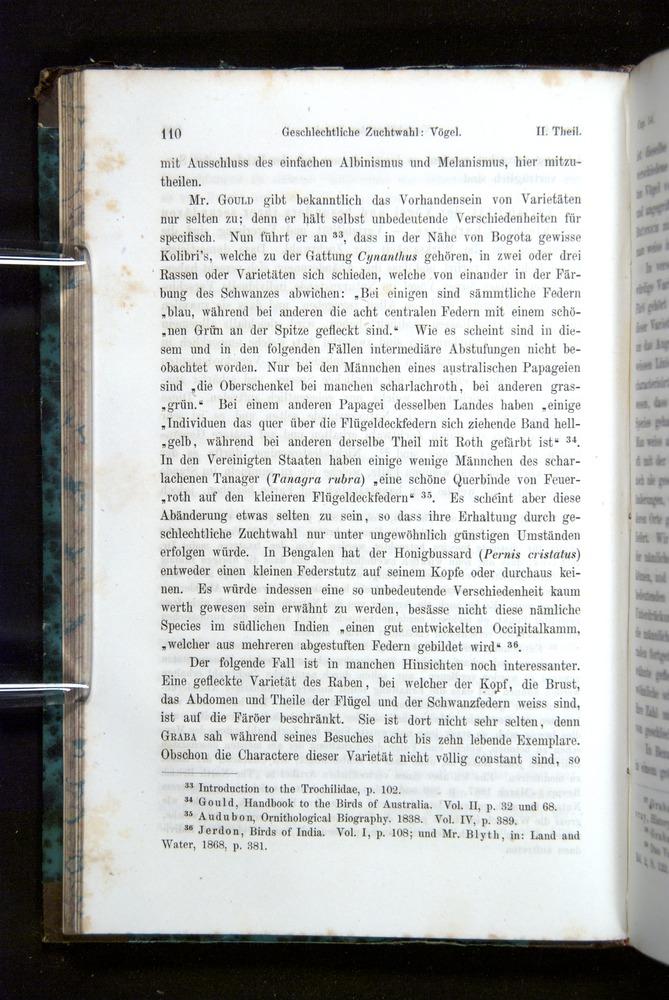 Image of Darwin-F1065.2-1871-110