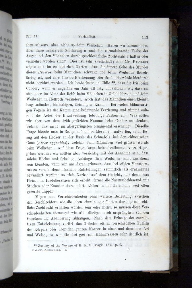Image of Darwin-F1065.2-1871-113