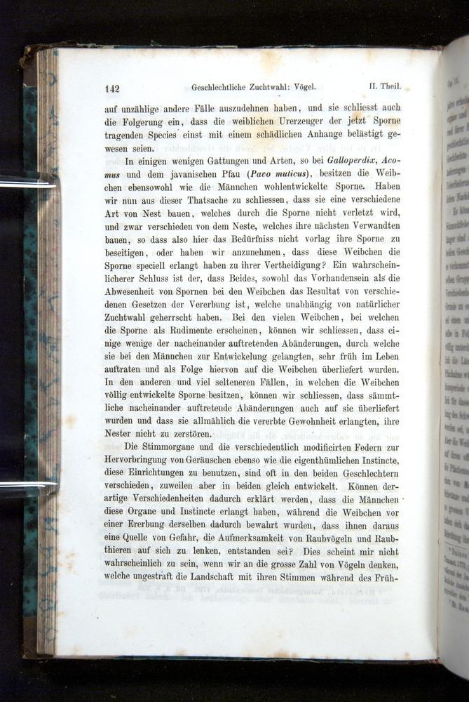 Image of Darwin-F1065.2-1871-142
