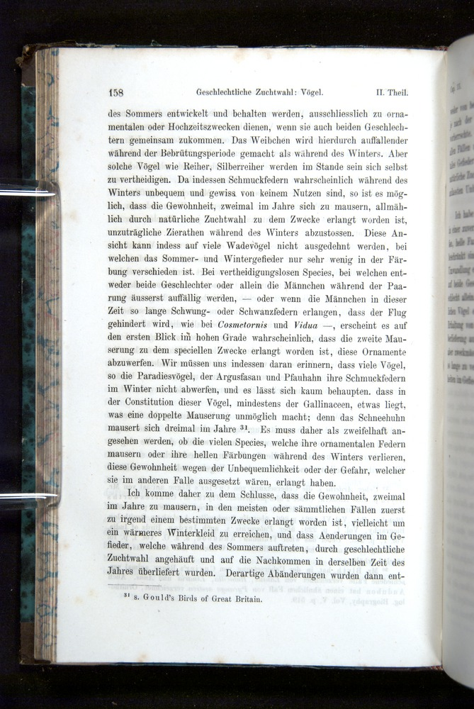 Image of Darwin-F1065.2-1871-158