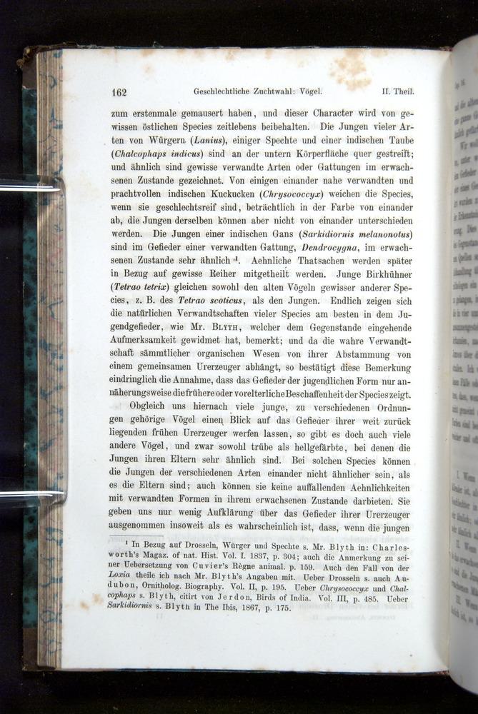 Image of Darwin-F1065.2-1871-162