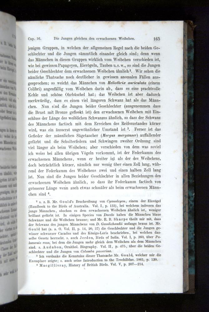 Image of Darwin-F1065.2-1871-165