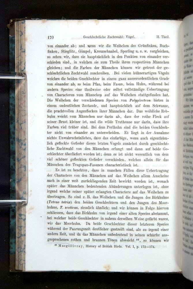 Image of Darwin-F1065.2-1871-170