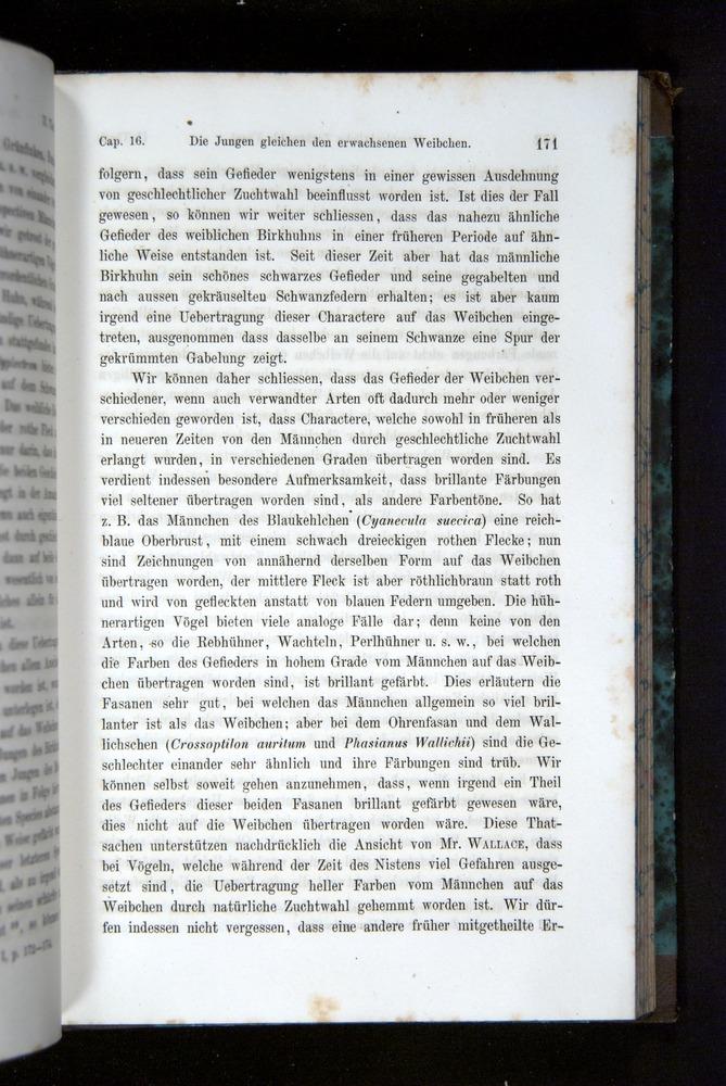 Image of Darwin-F1065.2-1871-171