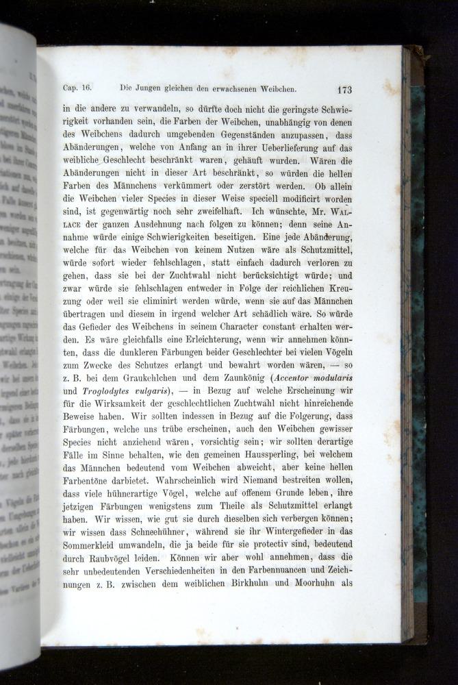 Image of Darwin-F1065.2-1871-173