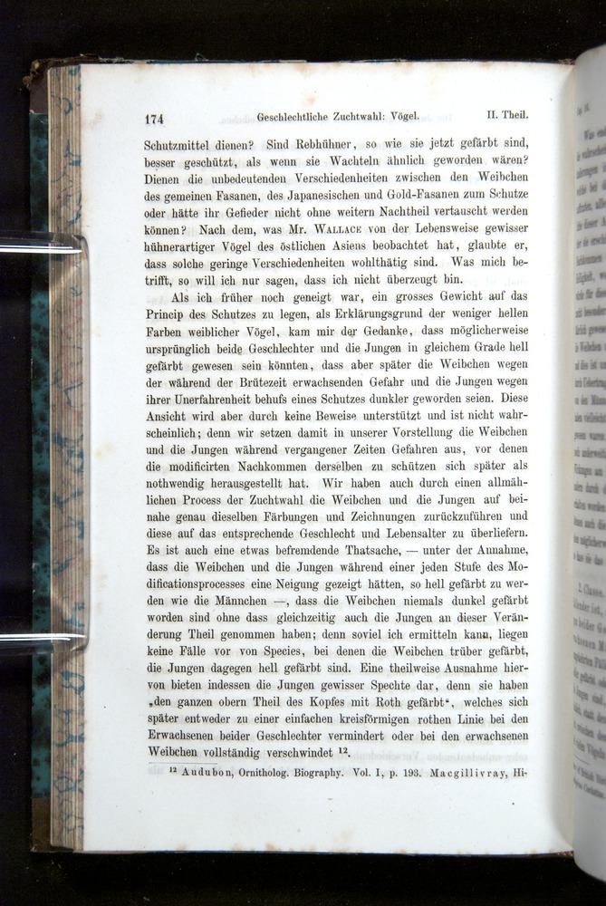 Image of Darwin-F1065.2-1871-174