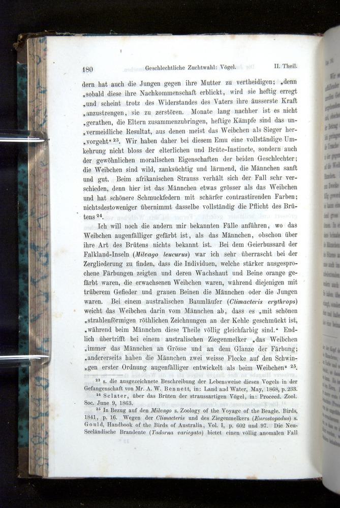 Image of Darwin-F1065.2-1871-180