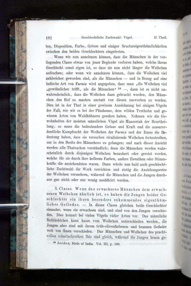 Image of Darwin-F1065.2-1871-182