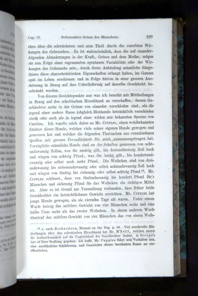 Image of Darwin-F1065.2-1871-229
