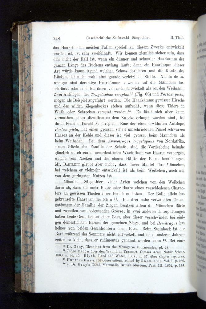 Image of Darwin-F1065.2-1871-248