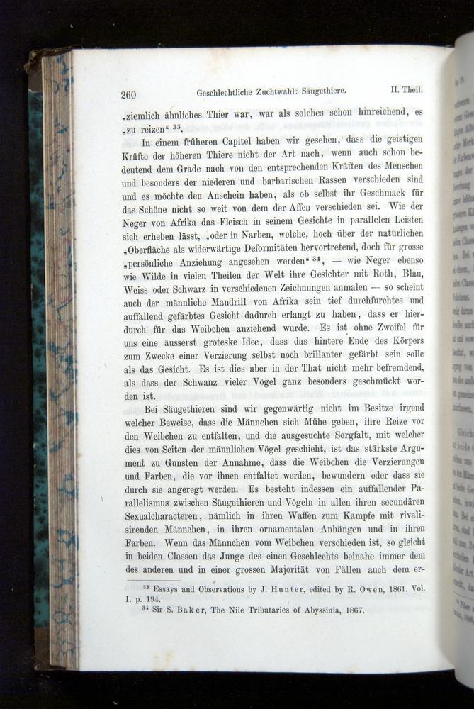 Image of Darwin-F1065.2-1871-260