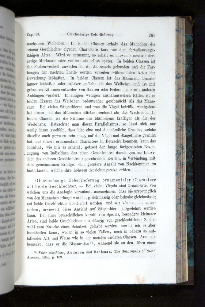 Image of Darwin-F1065.2-1871-261