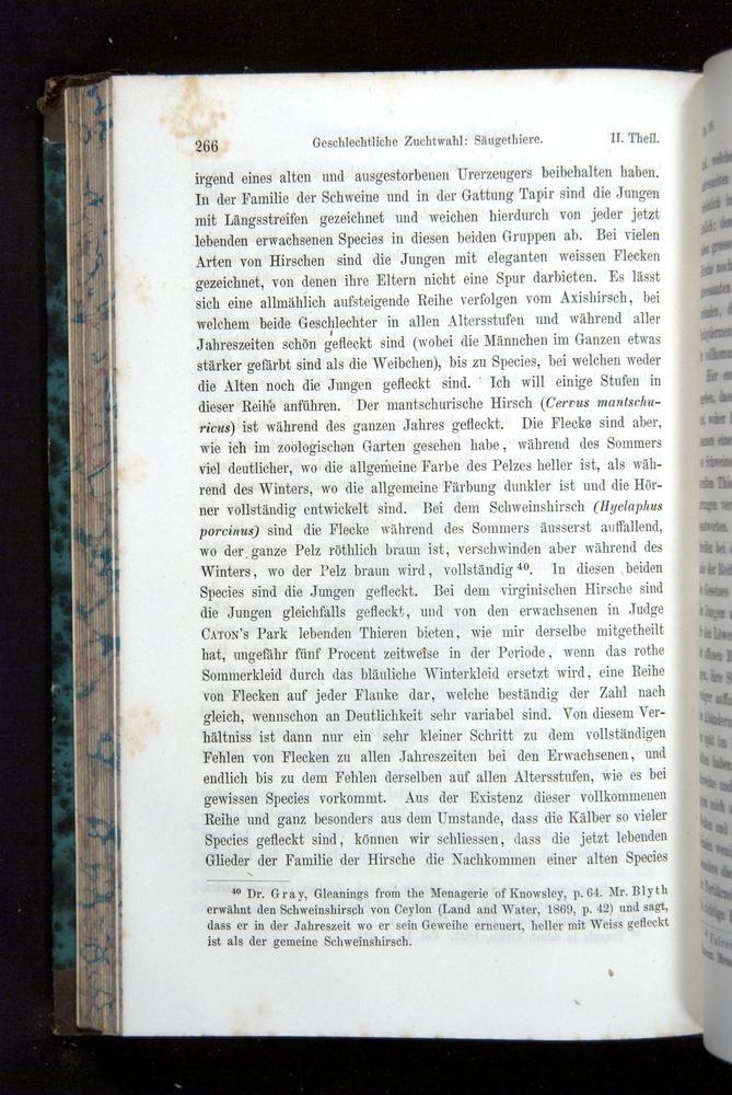 Image of Darwin-F1065.2-1871-266