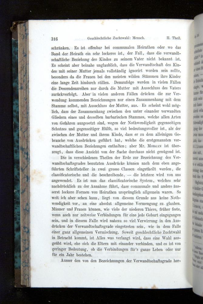 Image of Darwin-F1065.2-1871-316