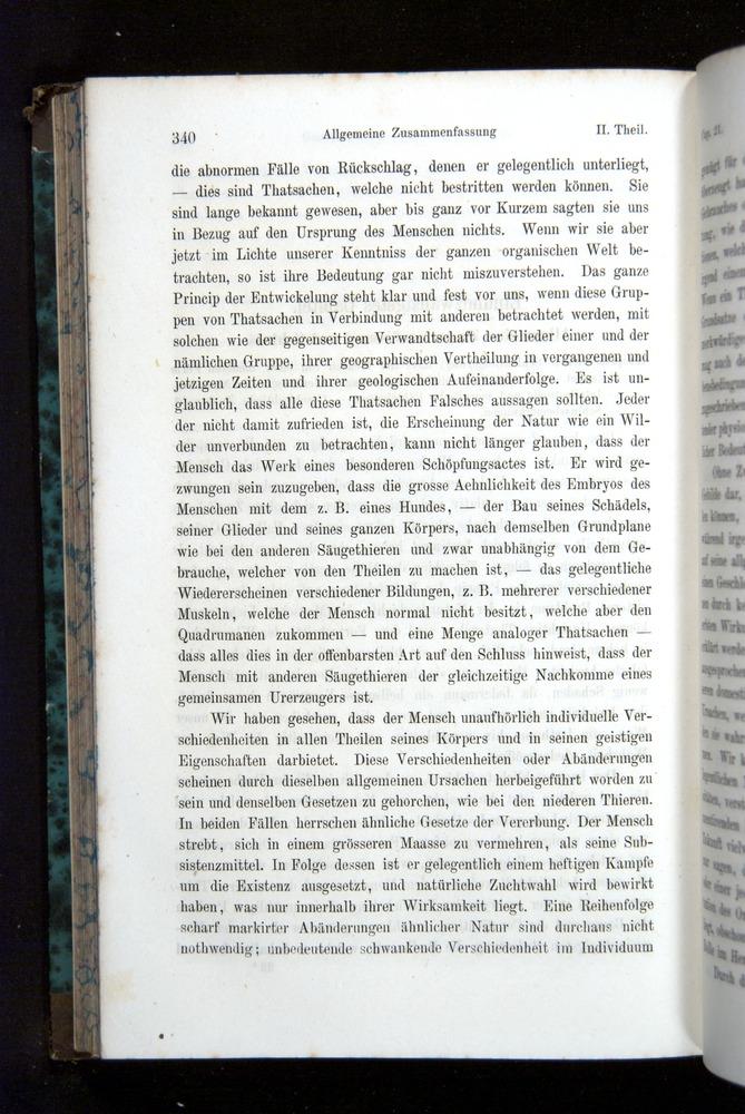 Image of Darwin-F1065.2-1871-340