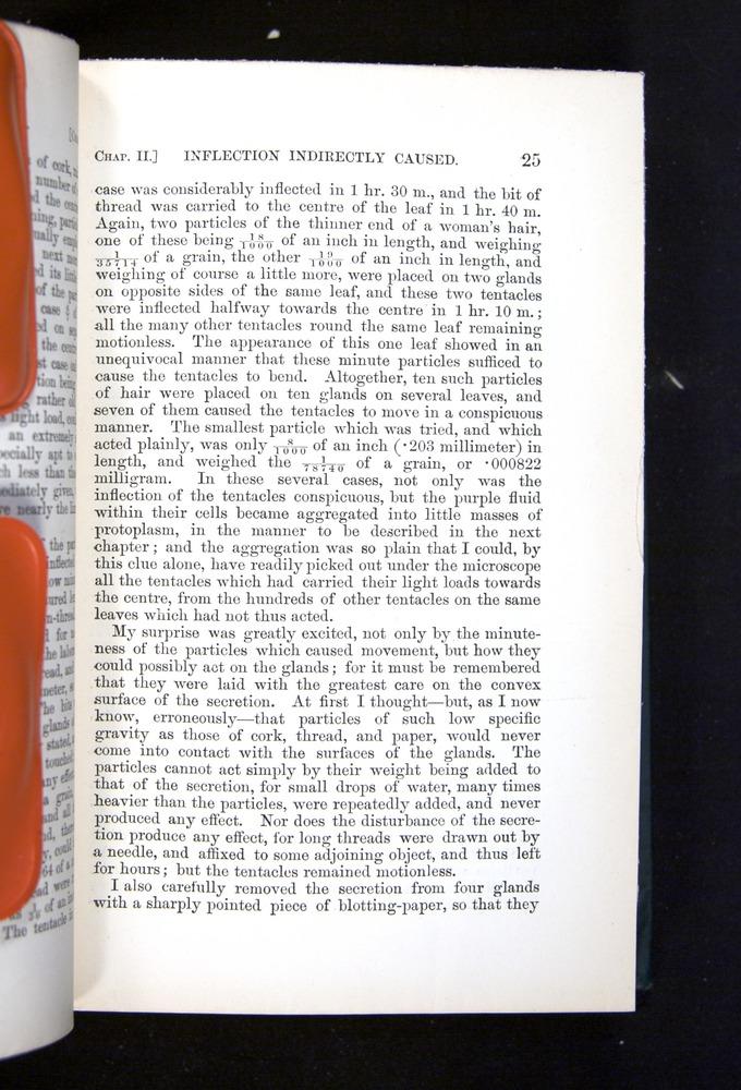 Image of Darwin-F1225-1888-025