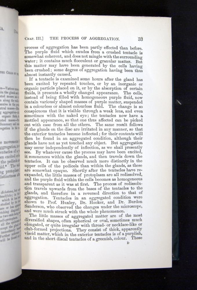 Image of Darwin-F1225-1888-033