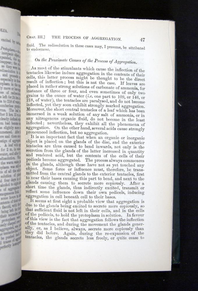 Image of Darwin-F1225-1888-047