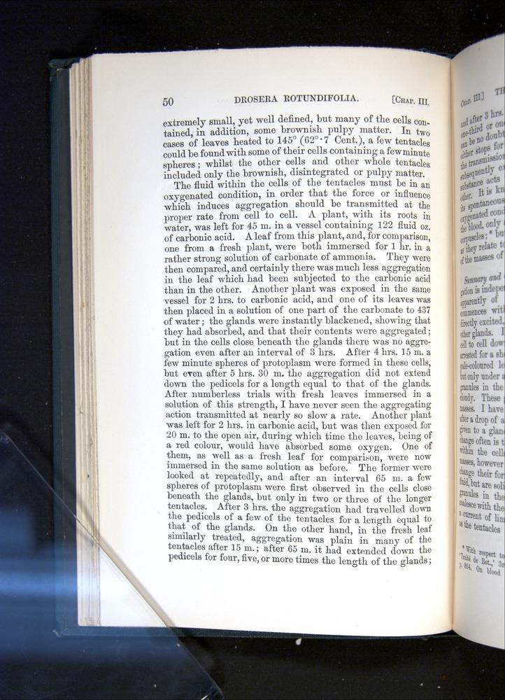 Image of Darwin-F1225-1888-050
