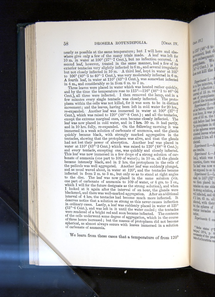 Image of Darwin-F1225-1888-058