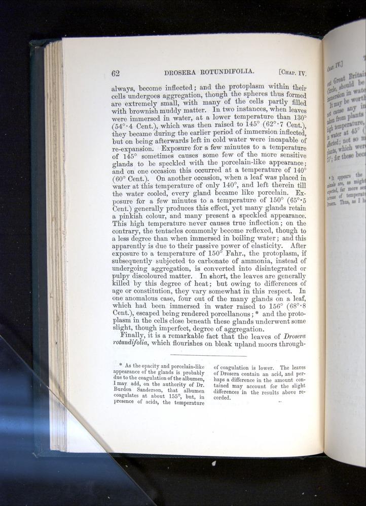 Image of Darwin-F1225-1888-062