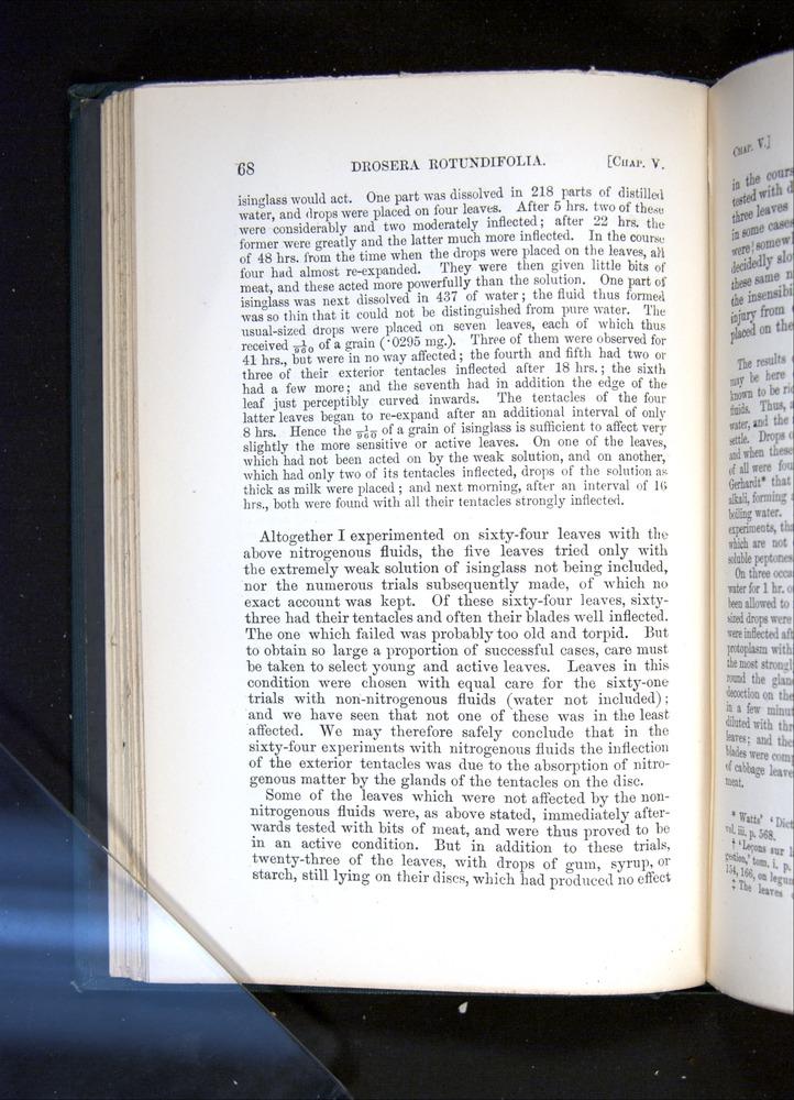 Image of Darwin-F1225-1888-068