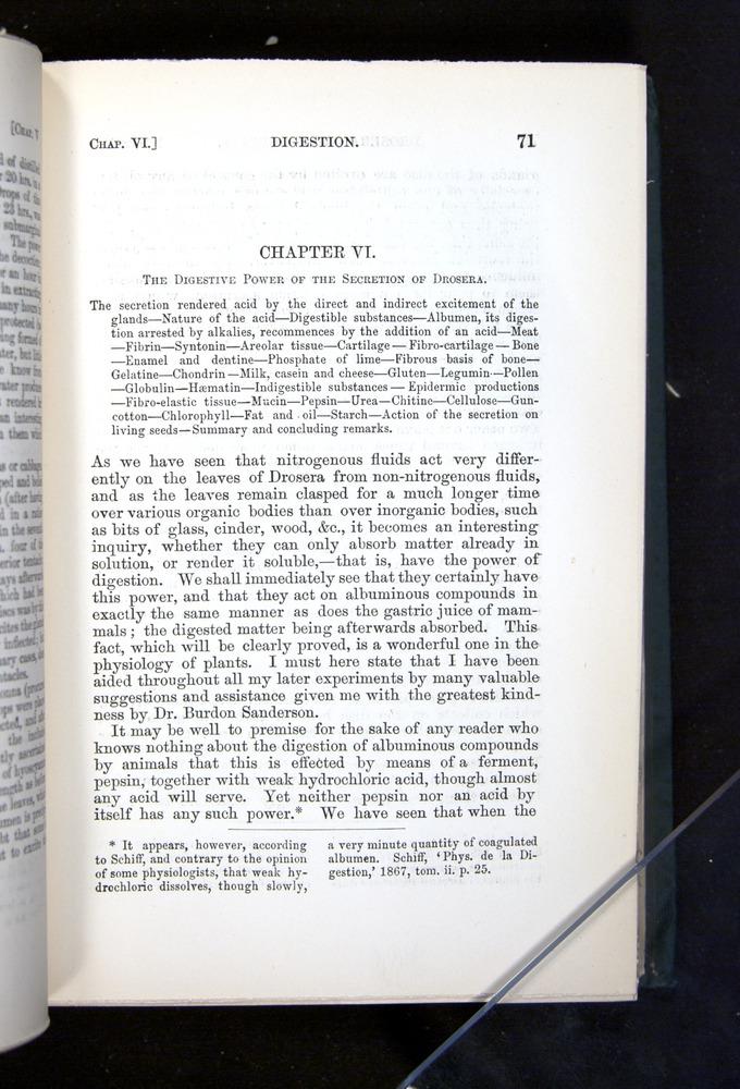 Image of Darwin-F1225-1888-071