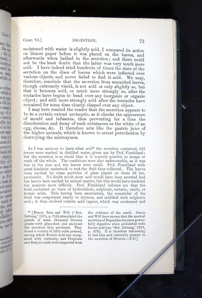 Image of Darwin-F1225-1888-073