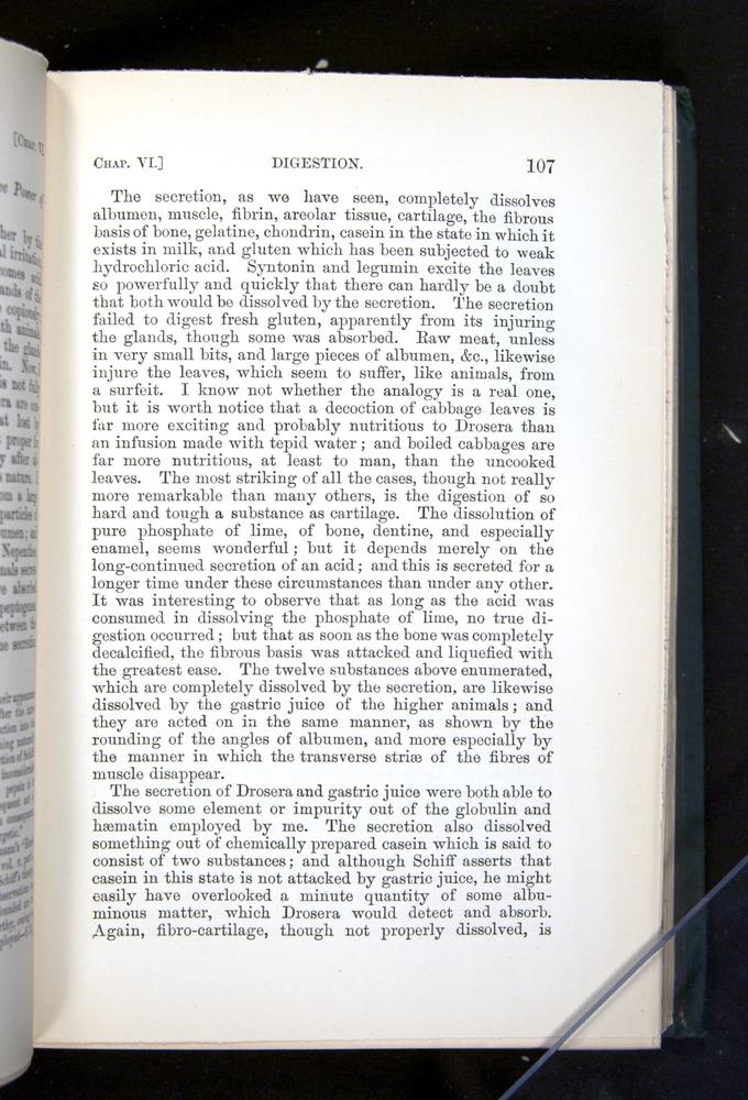 Image of Darwin-F1225-1888-107