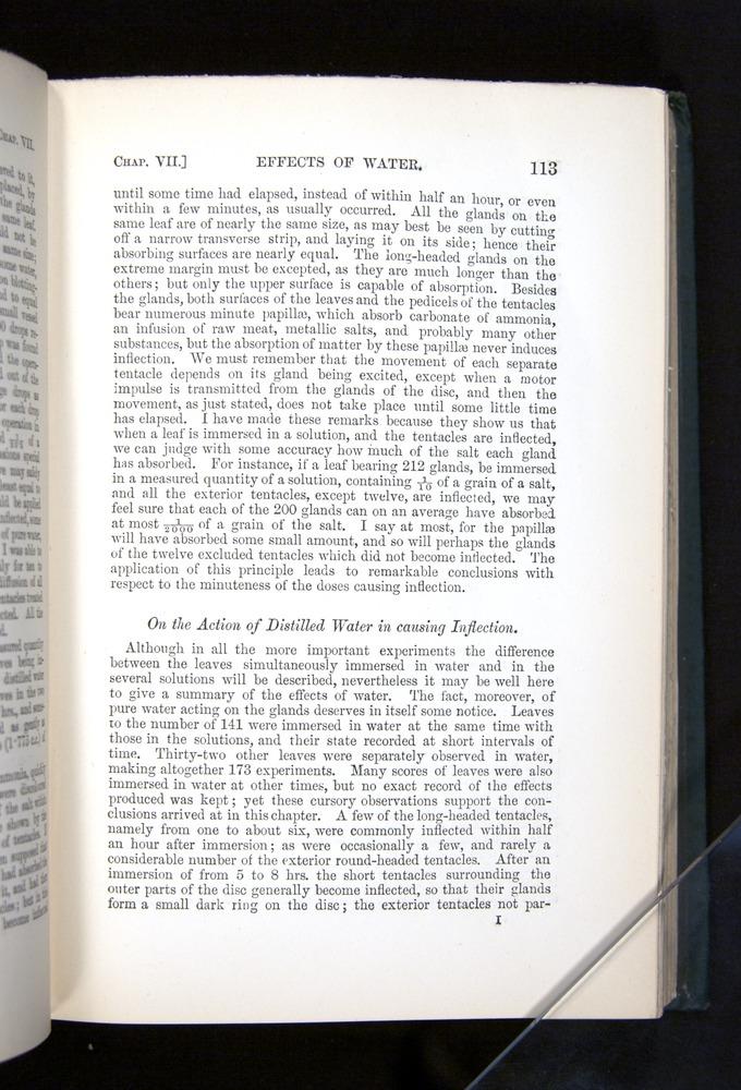 Image of Darwin-F1225-1888-113
