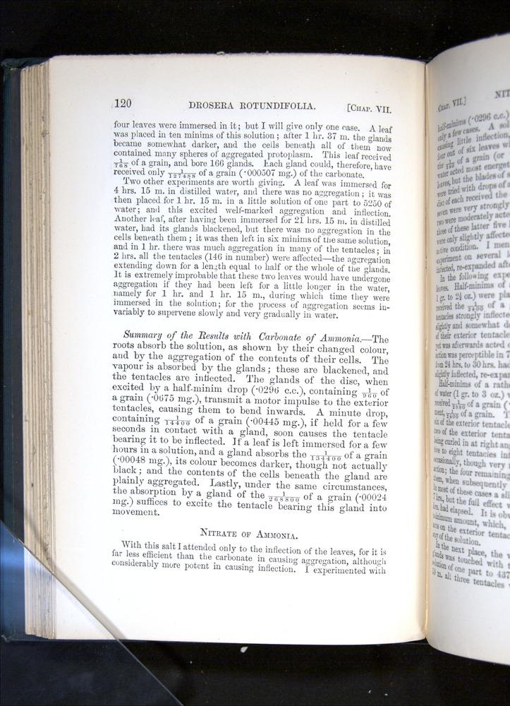 Image of Darwin-F1225-1888-120