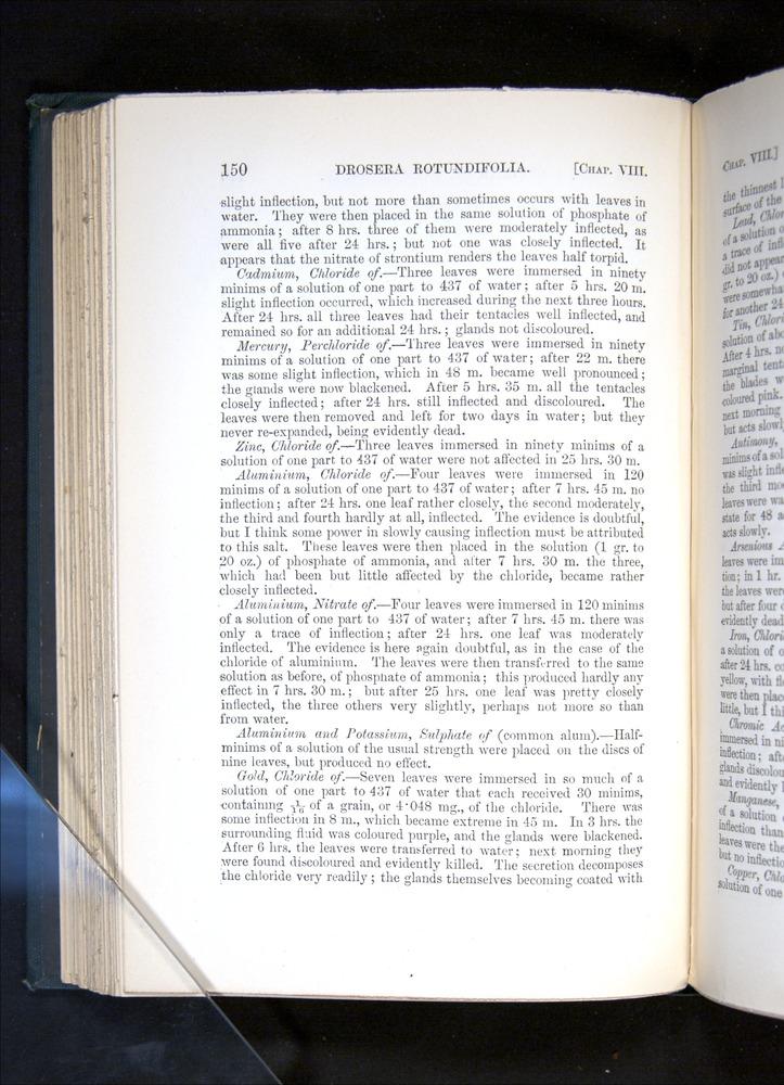 Image of Darwin-F1225-1888-150