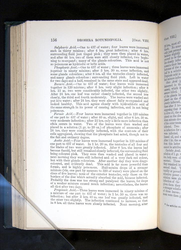 Image of Darwin-F1225-1888-156