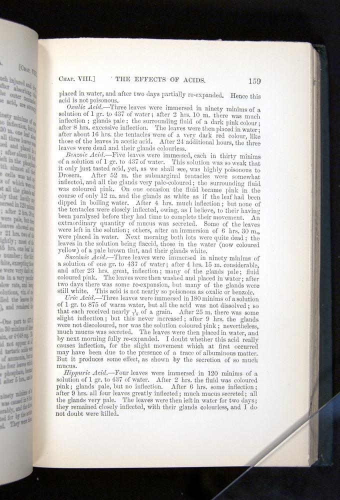 Image of Darwin-F1225-1888-159