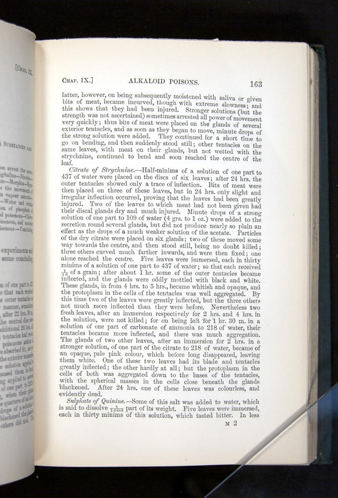 Image of Darwin-F1225-1888-163