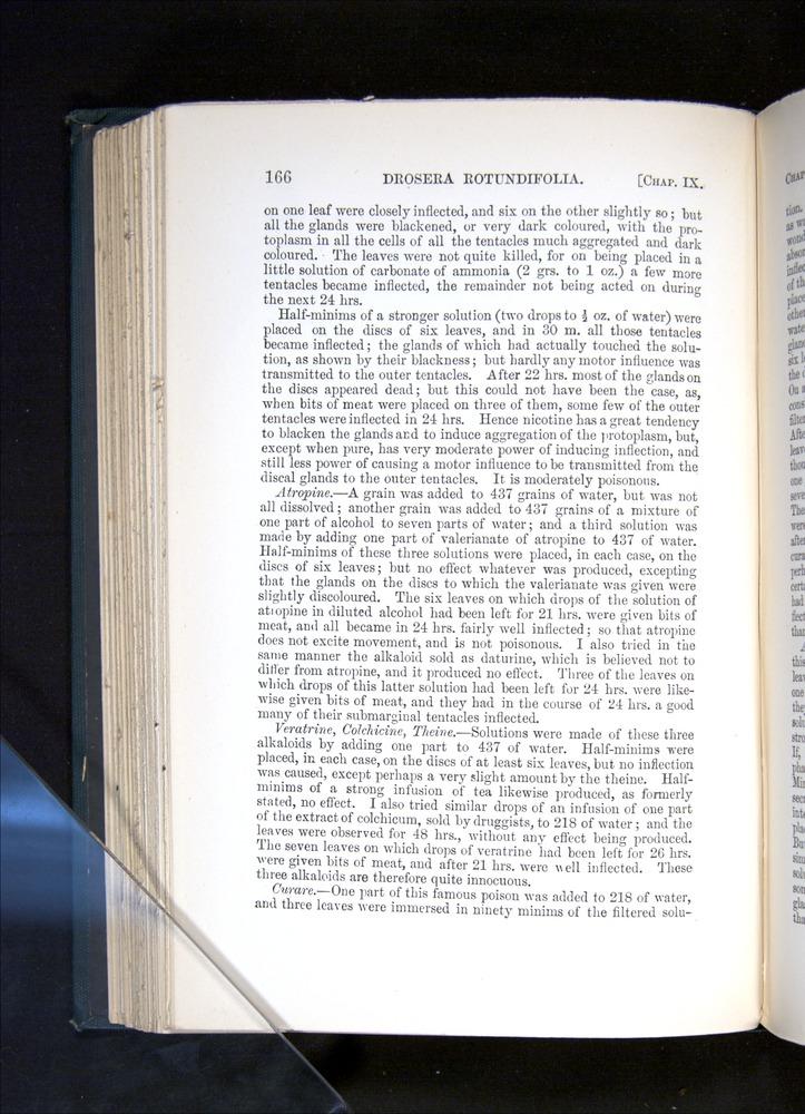 Image of Darwin-F1225-1888-166