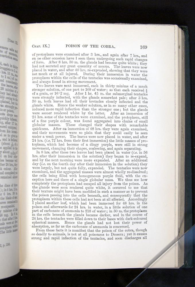 Image of Darwin-F1225-1888-169