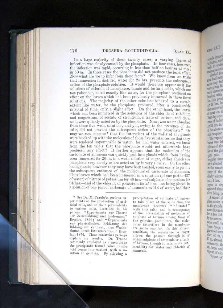 Image of Darwin-F1225-1888-176