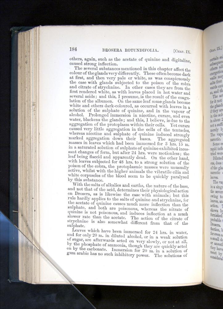 Image of Darwin-F1225-1888-184