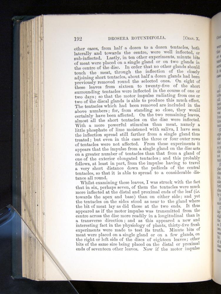Image of Darwin-F1225-1888-192