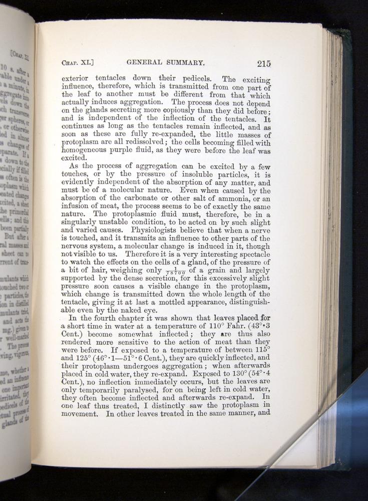 Image of Darwin-F1225-1888-215