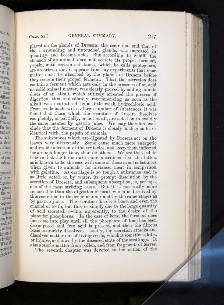 Image of Darwin-F1225-1888-217