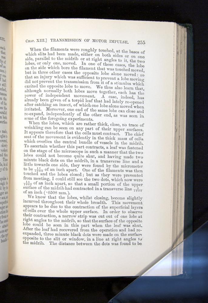 Image of Darwin-F1225-1888-255