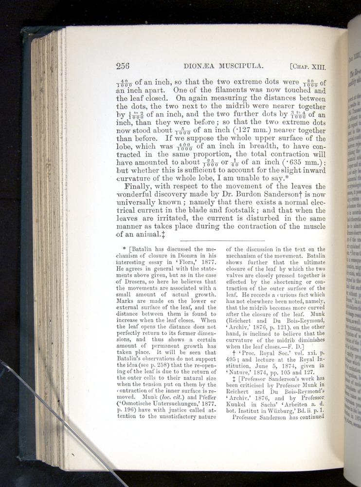 Image of Darwin-F1225-1888-256